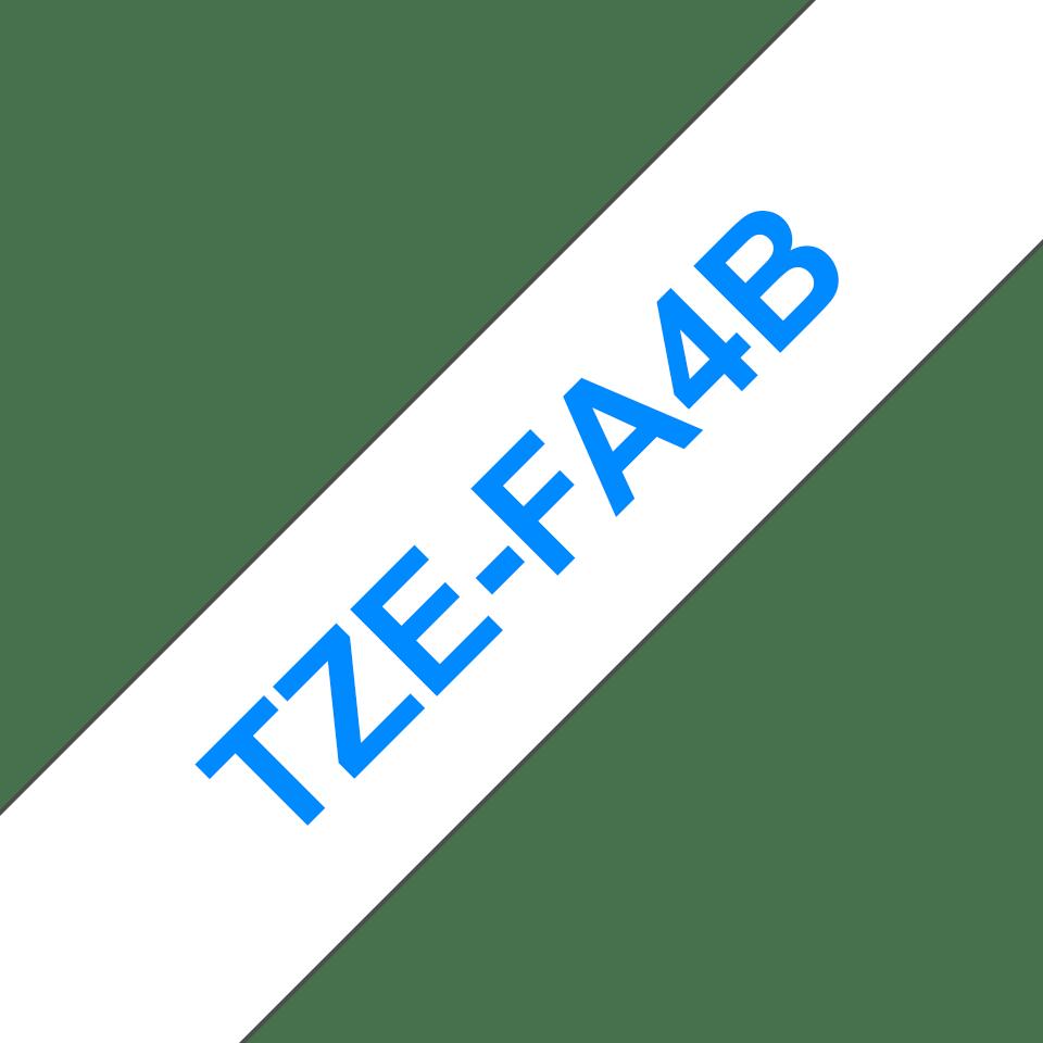 TZeFA4B